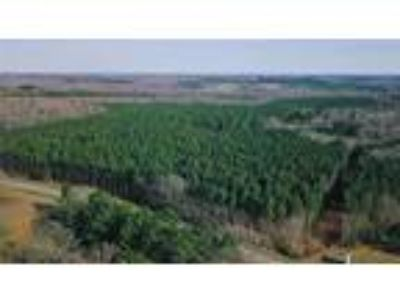 150 acres of undeveloped property in a great ...