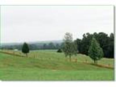 7.46 Acres Of Kentucky Bluegrass