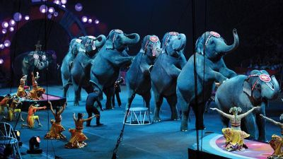 Ringling Bros. and Barnum  Bailey Circus Tickets at NRG Stadium on 07092015