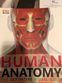 Human body coloring book and book
