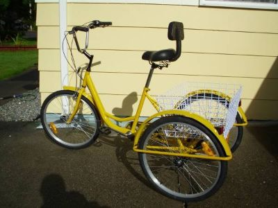 Trike, adult, yellow