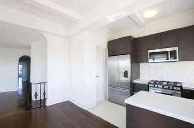 Luxury 2 bedroom 2 bathroom penthouse apartment for rent