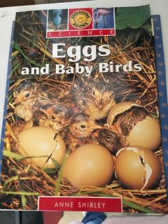 Science Eggs and Baby Birds