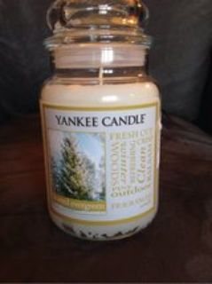 Frosted Evergreen Yankee Candle 22oz jar