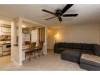 Roommate wanted to share One BR One BA Condo...