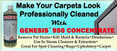 $60, Do It Yourself Professional Carpet Cleaning