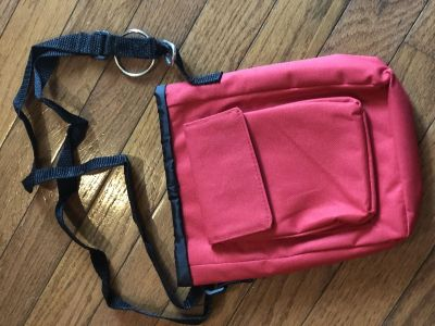 Insulated lunch tote 1 of 2