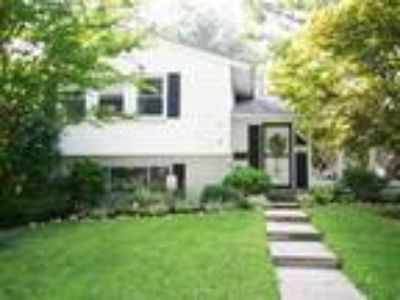 Gorgeous classic split level with huge yard.