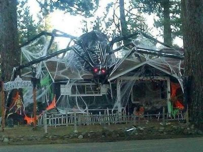 In need of Halloween decorations donated