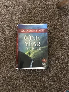 God Sightings: The One Year Bible NLT