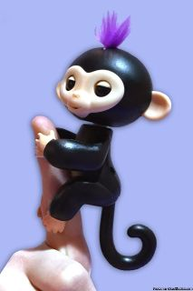 Happy Monkey Interactive Baby Monkey Finger Pets In Stock Now!