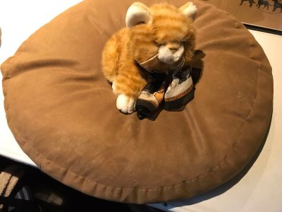 Cat bean bag, good condition 24 round. (Cat not included)