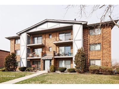 Foreclosure - Theresa Ln Apt 204, Tinley Park IL 60477