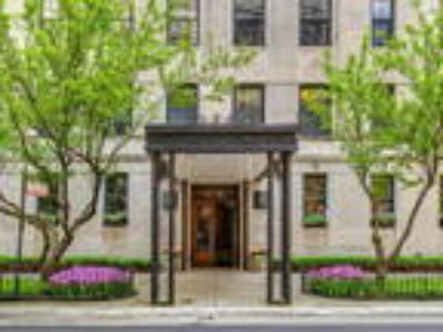 Chicago Two BR, 73 East Elm Street 14B , IL Listing Price: