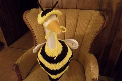 Bee Geese Goose Outfit Crochet Lawn Goose Clothes