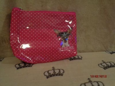 Dog Lover's Cosmetics or Personal Bag