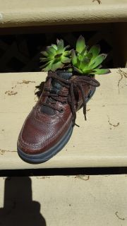 Hens a d chick plants in a shoe leave out all year long