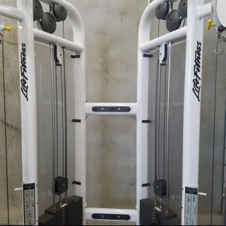 Life Fitness Signature Series Cable Motion Dual Adjustable Pulley