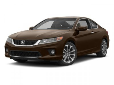 2013 Honda Accord EX-L V6 (Gray)