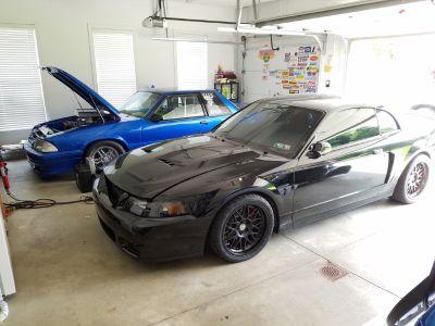 "2003 Ford Mustang Cobra ""Terminator"""