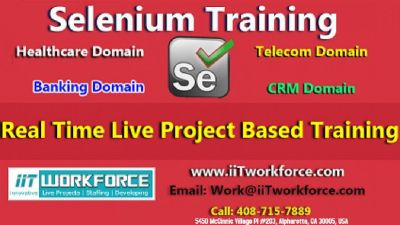Selenium Real-time Project Workshop experience by iiT Workforce In The US