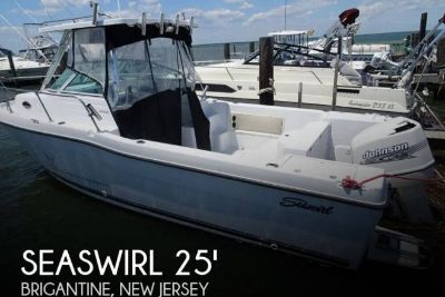 2001 Seaswirl Striper 2600 Limited Edition Walkaround