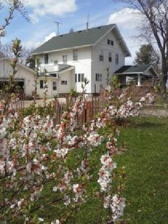 Large Farmhouse on two acres of fruit trees