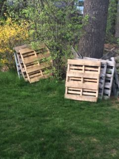 Free wood pallets, plus 40 dollars to hall away