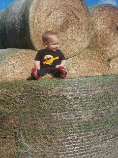 Hay for sale cow hay 55 bale horse $85 per bale