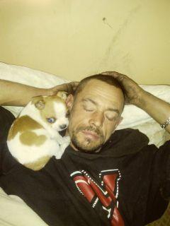 Missing Puppy