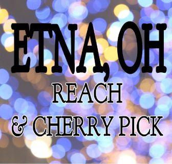 FORKLIFT: Reach & Cherry Pick