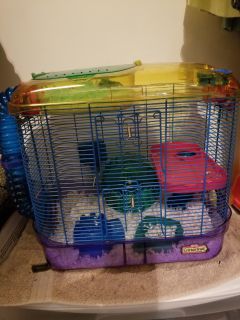 2 Dwarf Hamsters, Cage, & Accessories