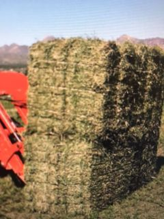 ISO New Mexico two string Alfalfa bales