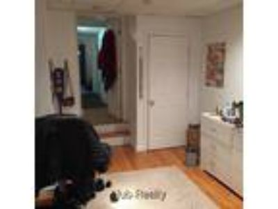 Brookline Beacon Street Three BR Two BA duplex with patio in nice Brownstone on