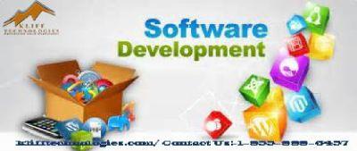 Mobile app development company in Bay of Plenty