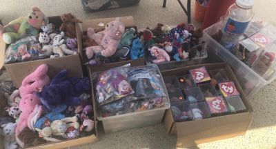 New Beanie Babies, Beanie Buddies, Teeny Beanies, Cases and Tag Protectors