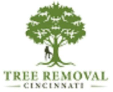 Tree Removal Cincinnati