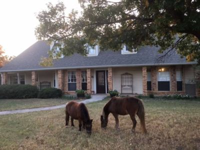$5000 5 single-family home in Denton County