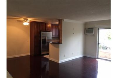 Ultra Luxury Newly Renovated Extra Large 1 Bed and 1 Bath Apt. , Open House Everyday!