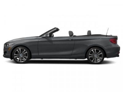 2019 BMW 2 Series 230i xDrive (Mineral Grey Metallic)