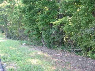 Lot 24 Chestnut Hill RD Rocky Mount, Great lot close to