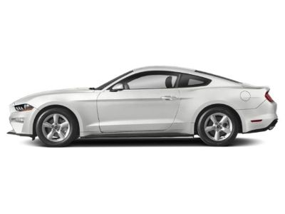 2019 Ford Mustang GT Fastback (Oxford White)