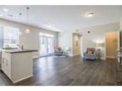 Ashford Gardens - Three BR | Two BA B