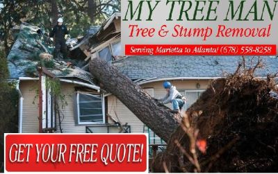 Tree & Stump Removal (678-558-8258 or visit web//www.mytreeman.com