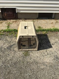 Collapsible animal crate