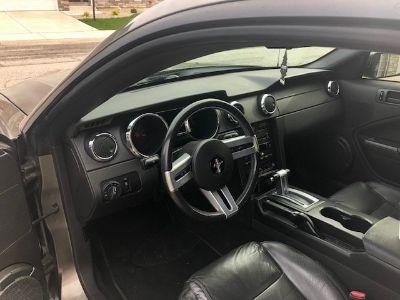 Mustang Street Car
