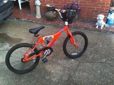 $25 Bike