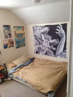 Room for Rent in Nice/Spacious Home