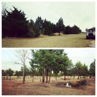 Lot and Acreage Mulching