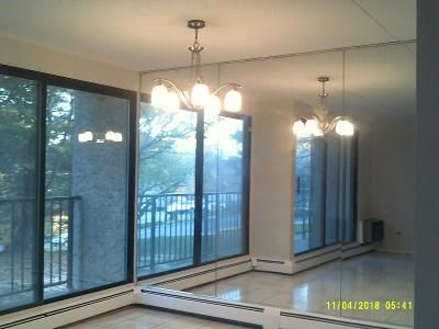 1 Bed 1 Bath Foreclosure Property in Peekskill, NY 10566 - Overlook Ave Apt 1r
